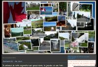 Mon Voyage en PVT au Canada 2013-2014