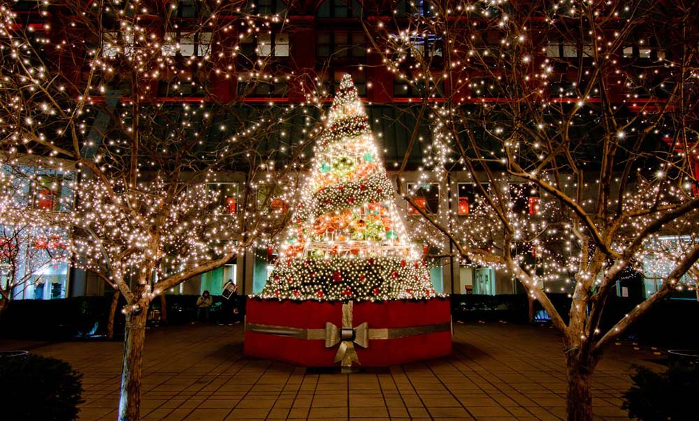 Decoration De Noel Montreal