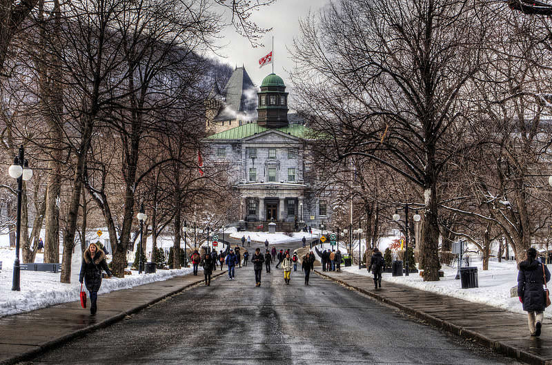 universite mcgill a montreal